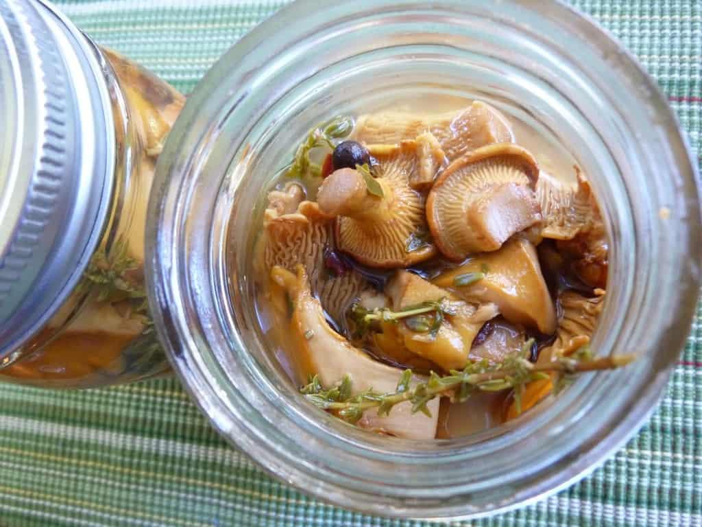 Pickled Chanterelles1