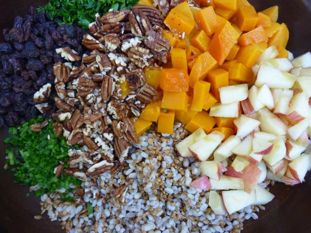 Barley Butternut Squash salad mix