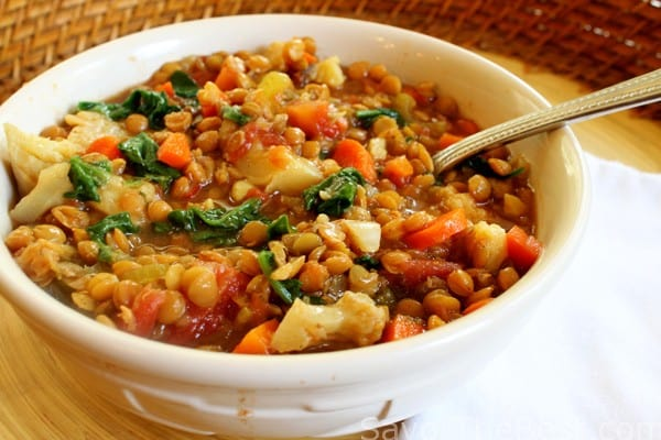 Slow Cooker Spicy Vegetable Lentil StewSavor the Best