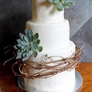 Vine and Succulent Cake