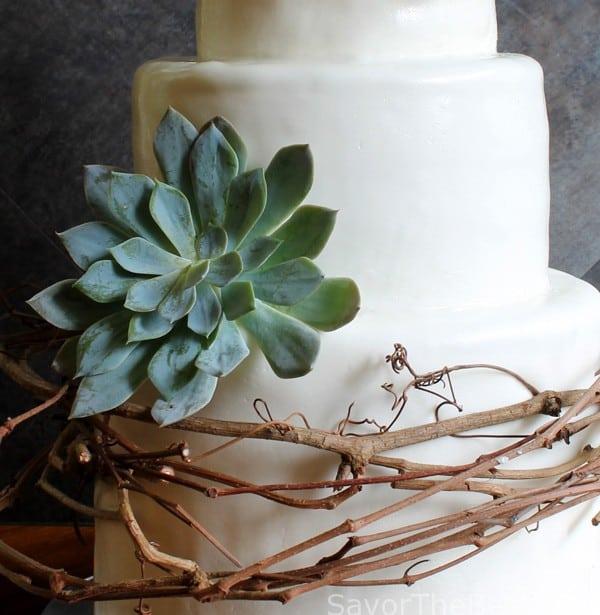 Vine and Succulent Cake Design