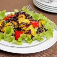 Black Rice-Mango Salad