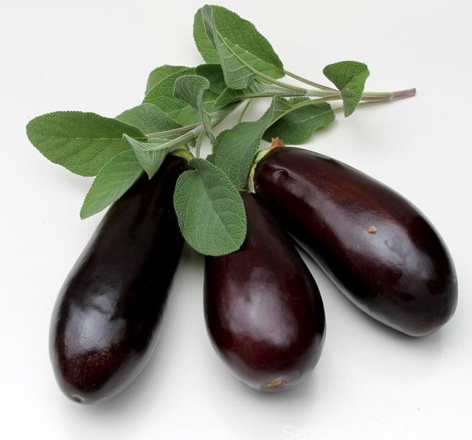 Roasted Eggplant with Fresh Herbs