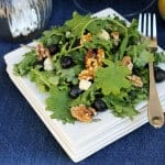 Baby Kale Salad with Blueberries and Blue Cheese