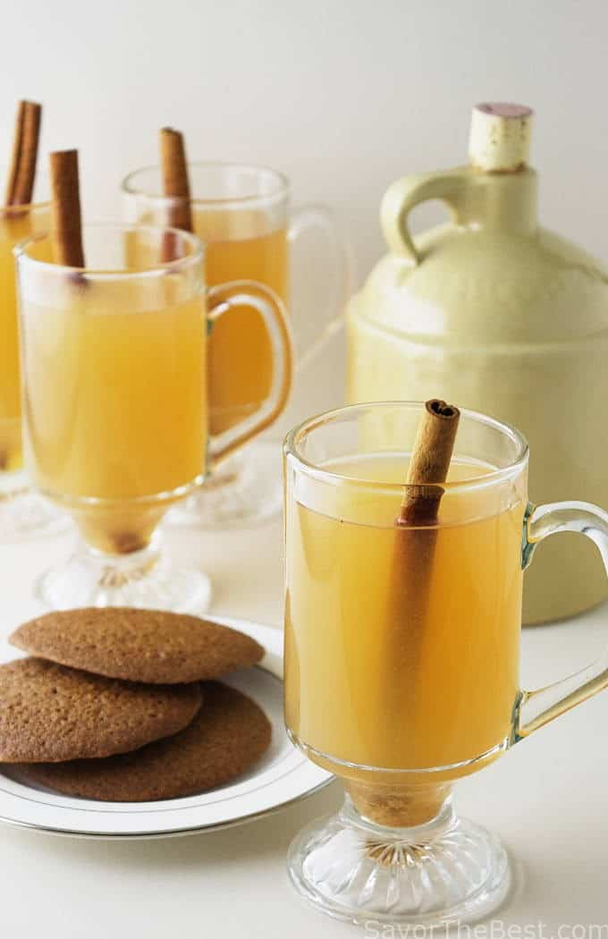 Hot Spiced Apple Cider - Savor the Best