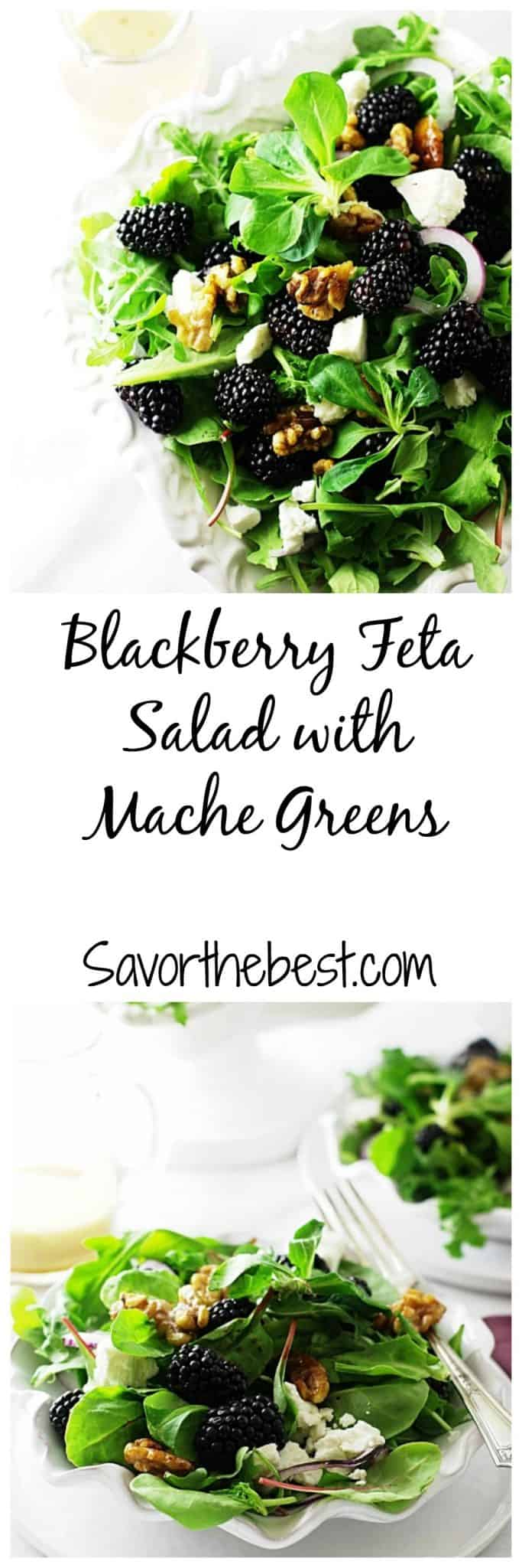 blackberry feta salad with mache greens