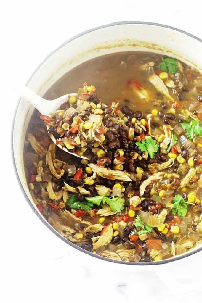Southwest Black Bean-Chicken Soup