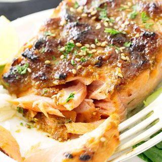 Miso-Hoisin Salmon Fillets