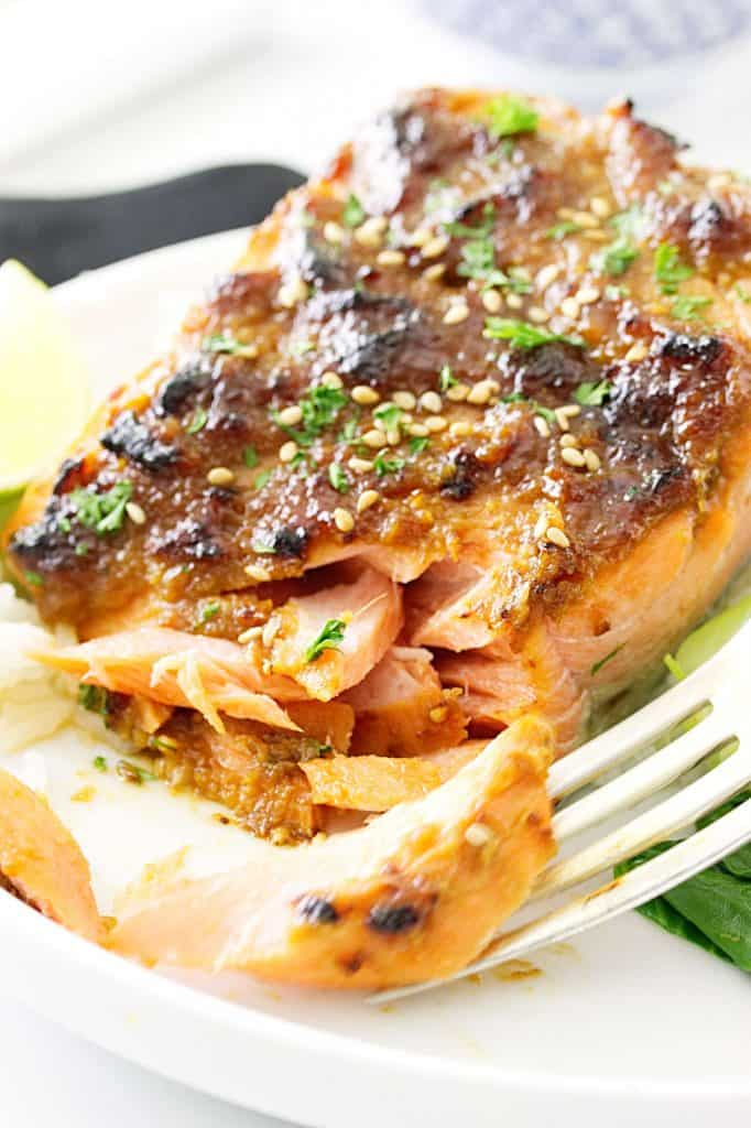 Miso-Hoisin Salmon Fillets