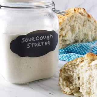 Wild yeast sourdough starter