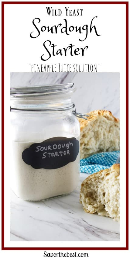 wild yeast sourdough starter with the pineapple juice solution