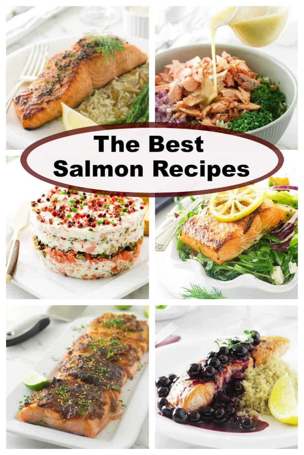 collage of salmon recipes