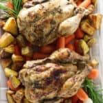 Frozen Cornish Game Hens in the Pressure Cooker