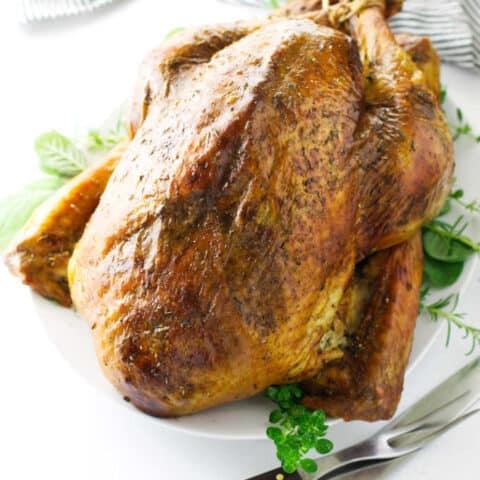 Roasted turkey on serving platter