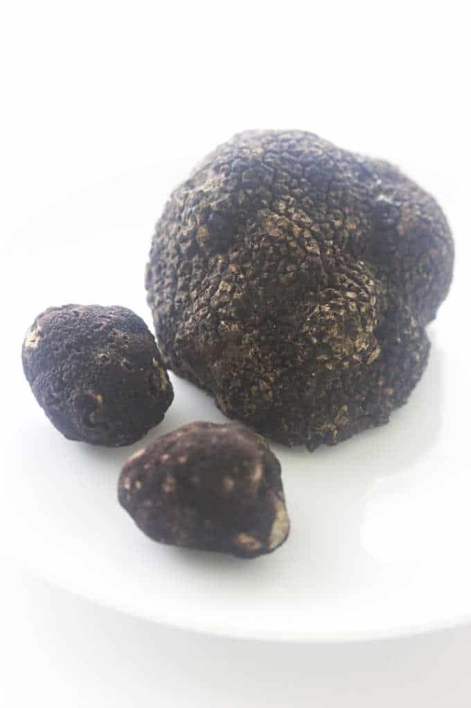 One large Oregon Black Truffle, 2 smaller ones