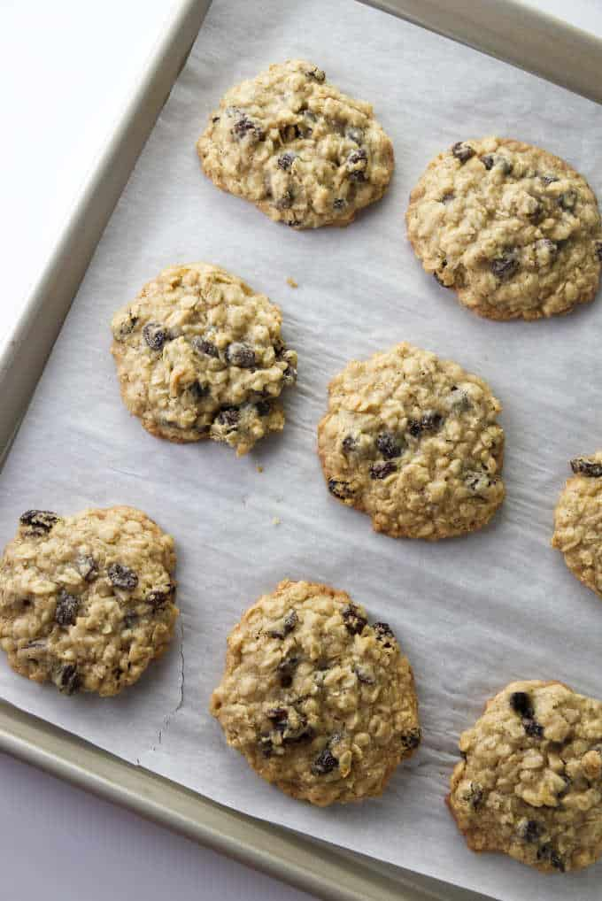 A baking sheet of warm oatmeal raisin cookies.