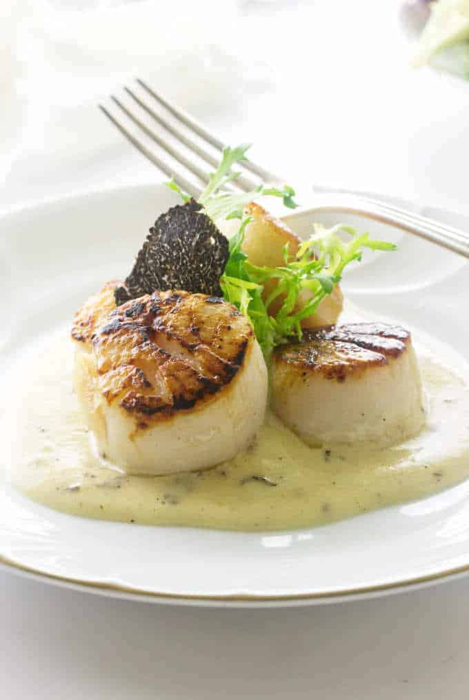 A plate of seared scallops with a black truffle slice and black truffle sauce.