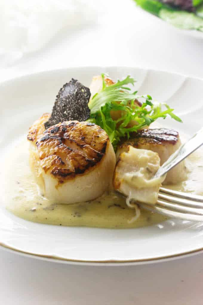 A serving of seared scallops in some black truffle beurre blanc sauce, garnished with frisée greens and a slice of truffle