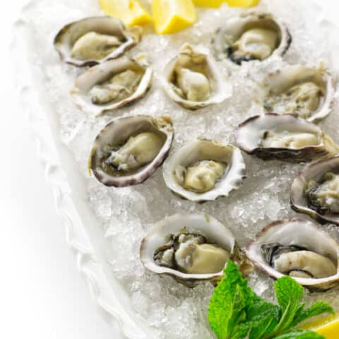 Plate of of oysters on the half shell in a bed of crushed ice, mint and lemon wedges