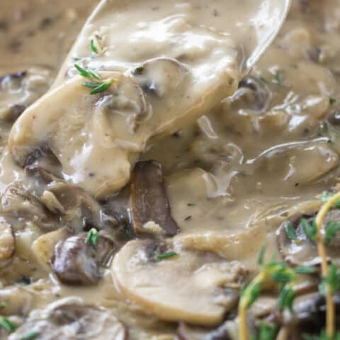A spoon scooping up some mushroom marsala sauce.