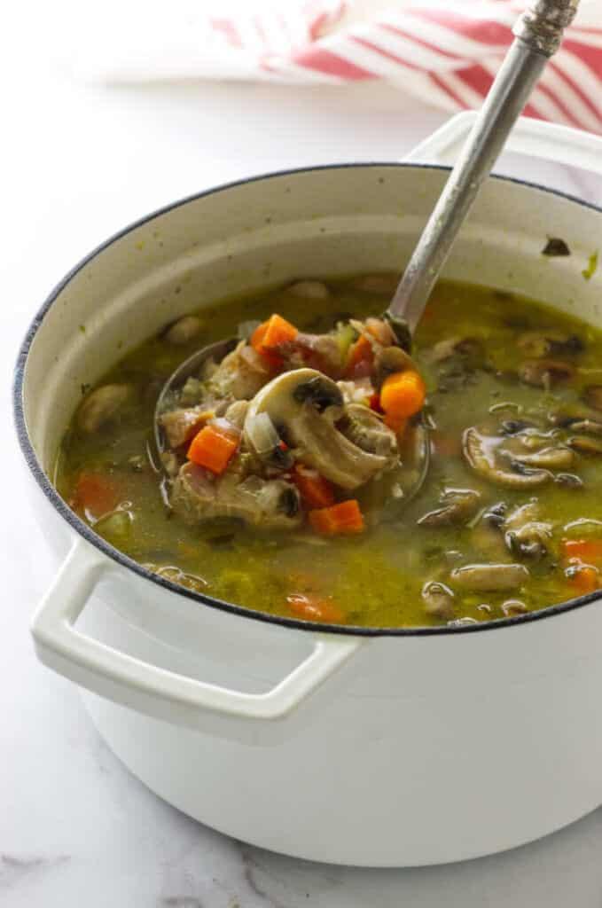 Soup pot of turkey Noodle Soup