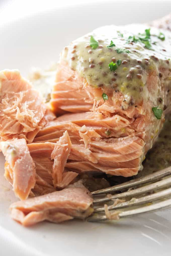 A bite shot of baked salmon with mustard sauce on top.