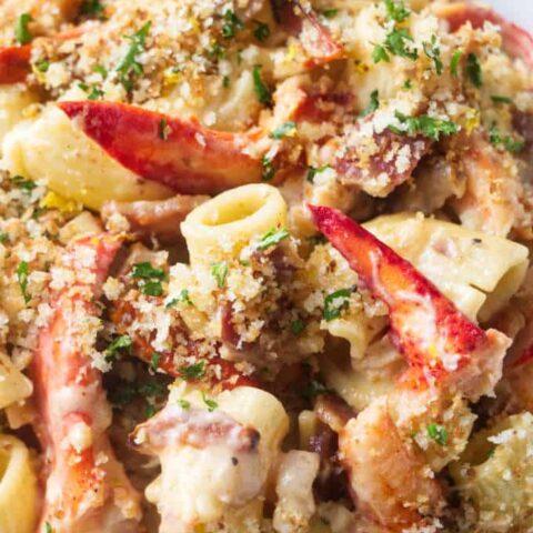 Closeup of lobster pasta with creamy garlic sauce.