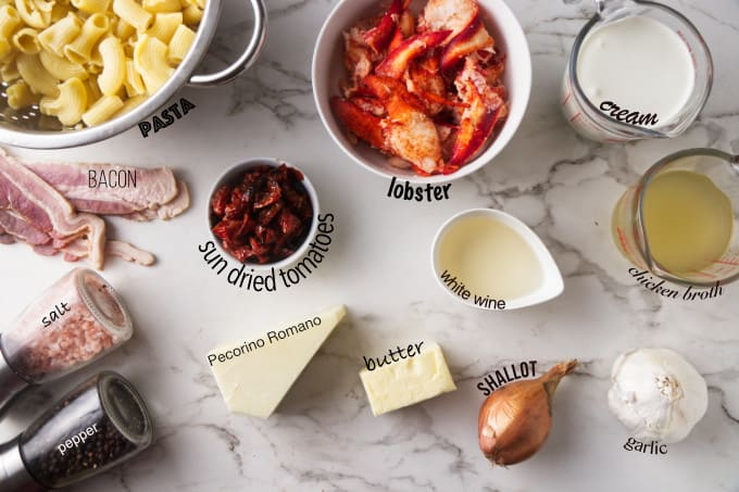ingredients needed for lobster pasta with creamy garlic sauce.