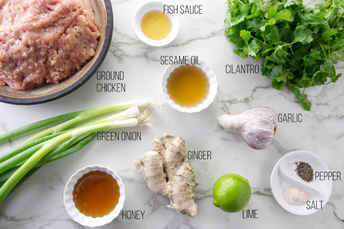 Ingredients needed to make chicken banh mi meatballs.