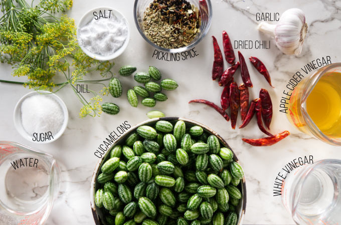 Ingredients needed to make a pickled cucamelon recipe.