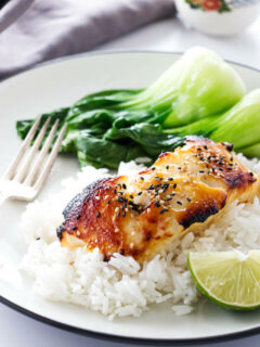 A serving of Miso Glazed Sea Bass on rice with baby bok choy